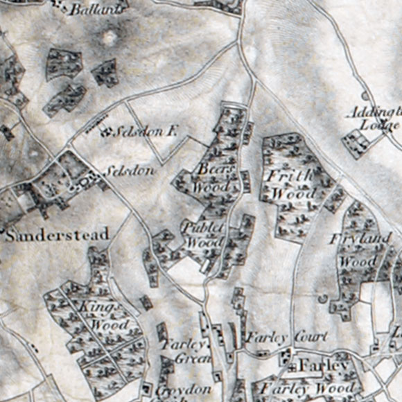 Ordnance Survey First Series map for Selsdon, Forestdale