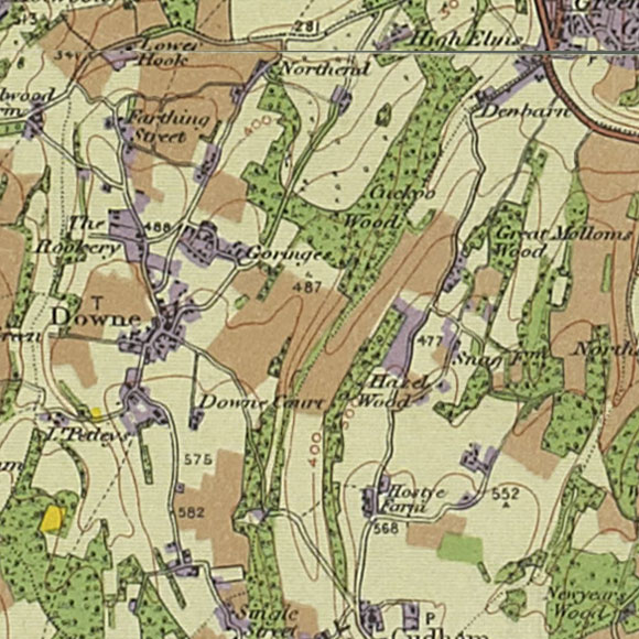 London map 1930s Land Utilisation Survey for Downe, Hazelwood